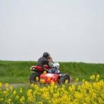 Une spéciale entre les champs de colza. Cool le jaune :)